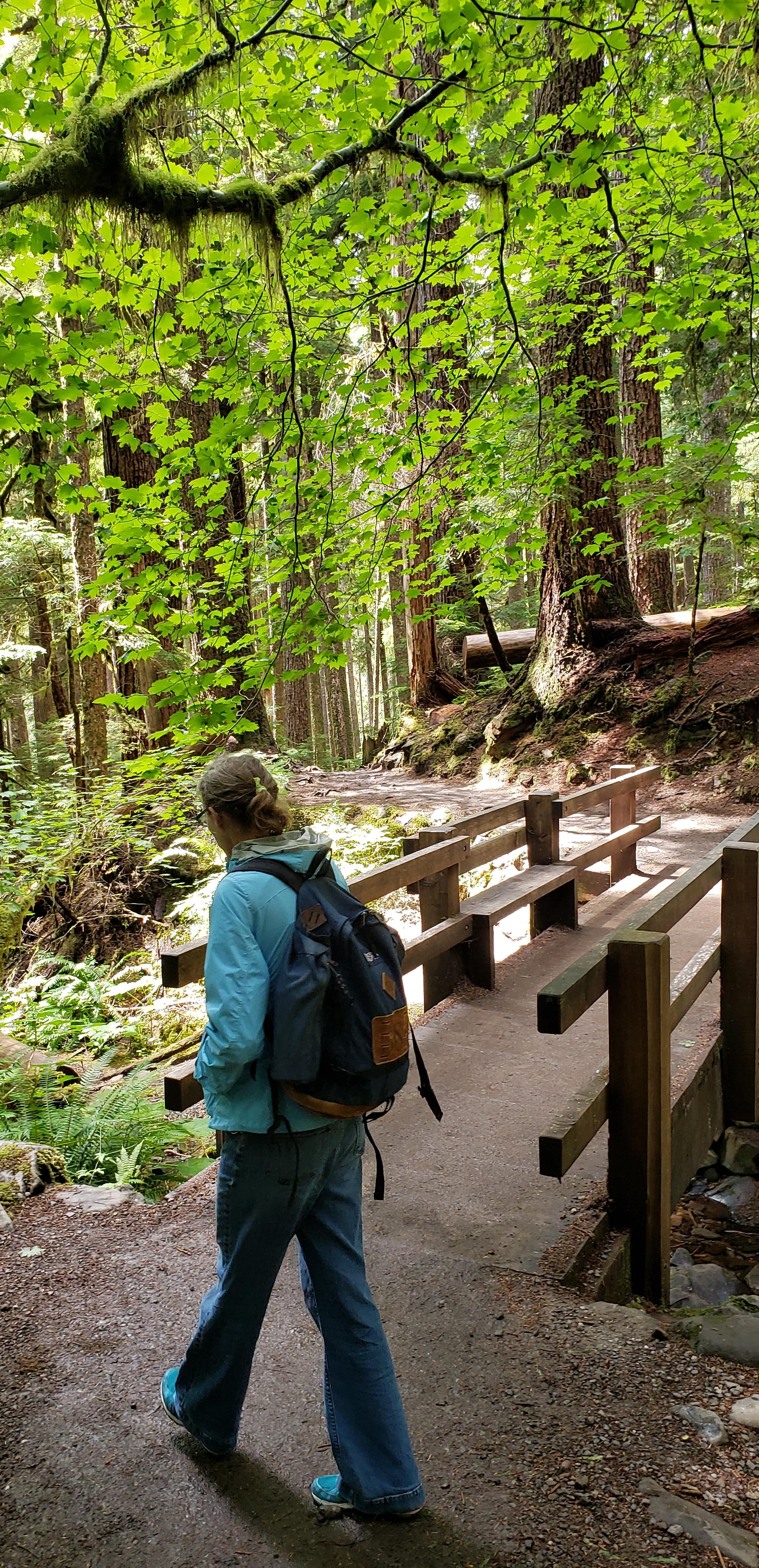 woman walking toward bridge in forest